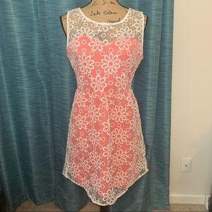Francesca's Annabella Sheer Floral Mini Dress